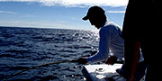 Deep Sea Fishing Orange Beach - Updated Crew Page